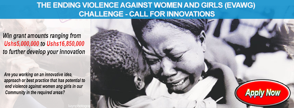 The Ending Violence Against Women and Girls (EVAWG) Challenge